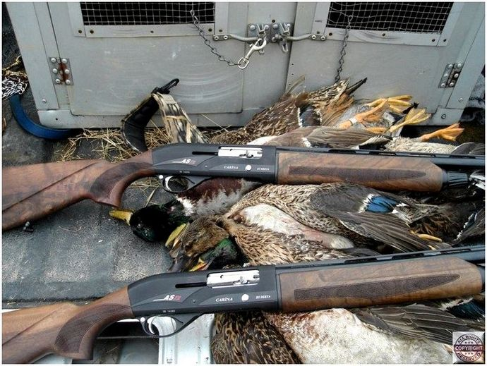 best-duck-hunting-gun-how-to-choose-the-right_4_1.jpg